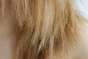 cabelo bonito