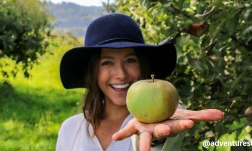 Hidratação com vinagre de maçã: 7 receitas que vão recuperar o brilho do cabelo