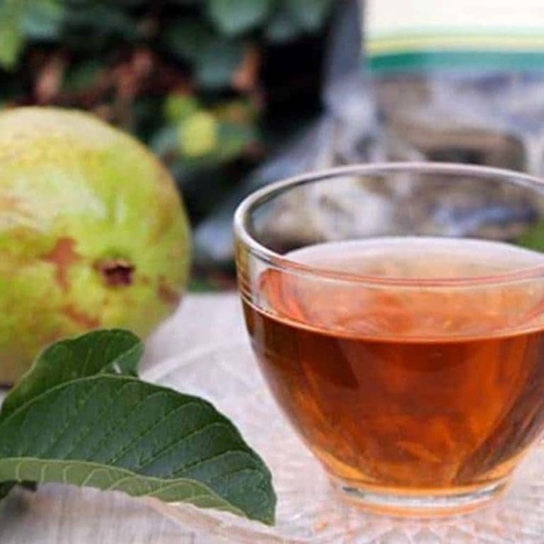 chá de folha de goiaba como usar