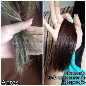 pontas do cabelo danificado